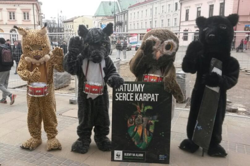 Ratujemy Serce Karpat – akcja WWF w obronie Puszczy Karpackiej