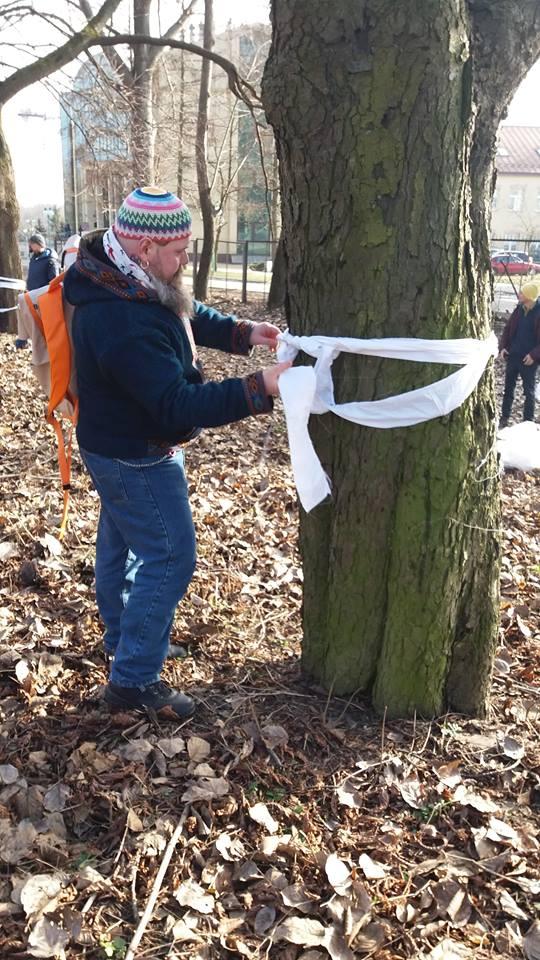 Niezwykły happening w obronie drzew